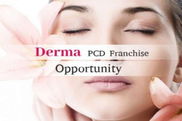 Best derma pcd company franchise