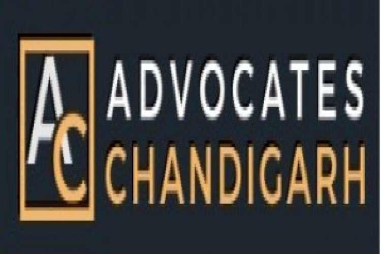 Best divorce lawyers in chandigarh