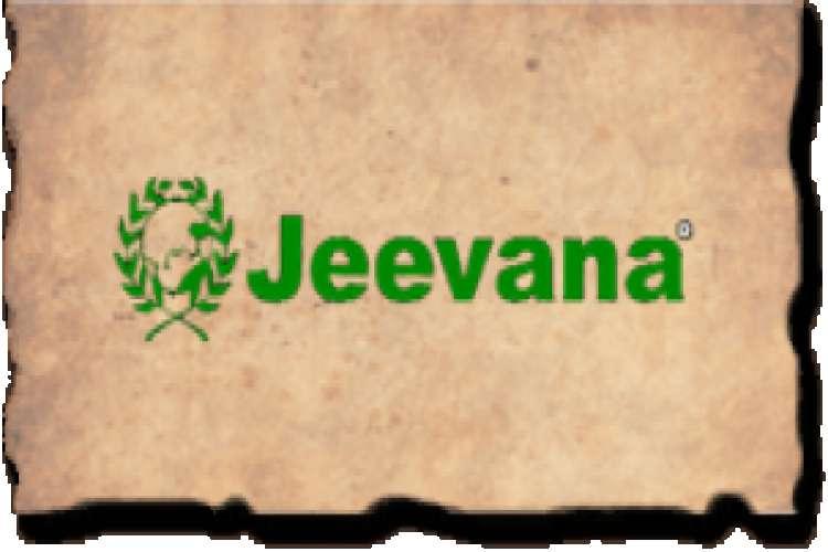Best kerala ayurvedic center in pune