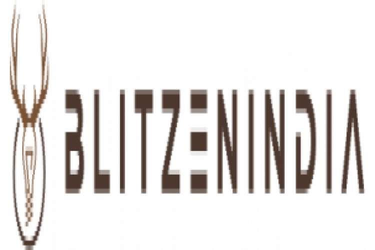 Buy electricals items online blitzen india