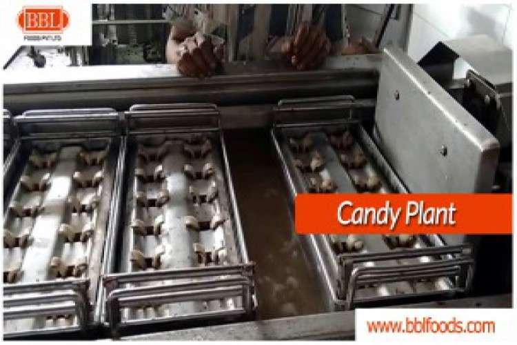 Candy plant chikkies bar line supplier