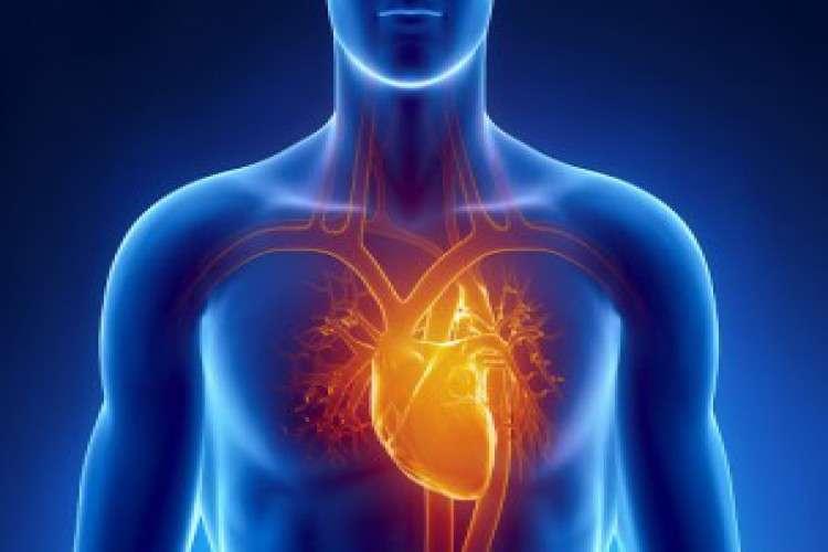 Cardiac surgery iowa cedar valley cardiovascular center