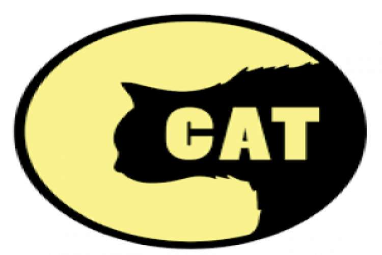 Cat entertainments   animated video production company