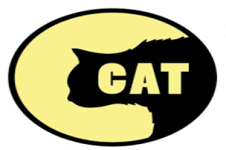 Cat entertainments   video production services