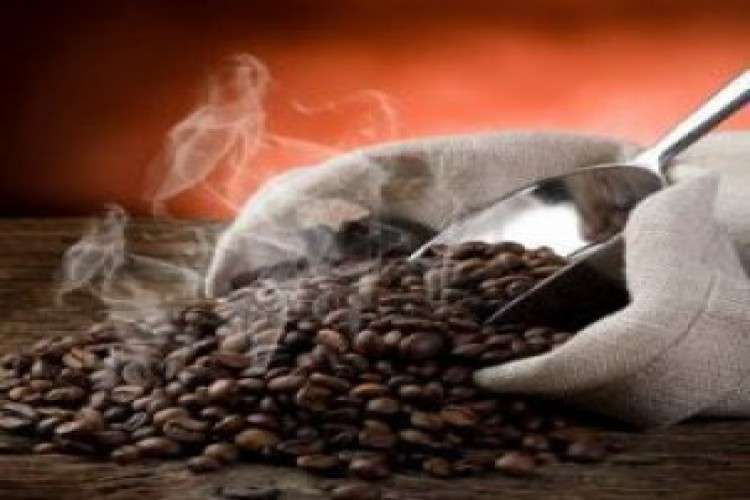 Coffee powder manufacturers in india mkcfoodproducts