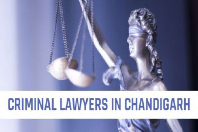 Criminal lawyers in chandigarh