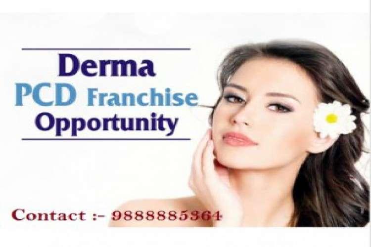 Derma pcd pharma companies