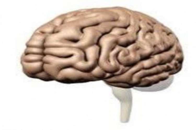 Dr madhu babu best neurosurgeon in warangal