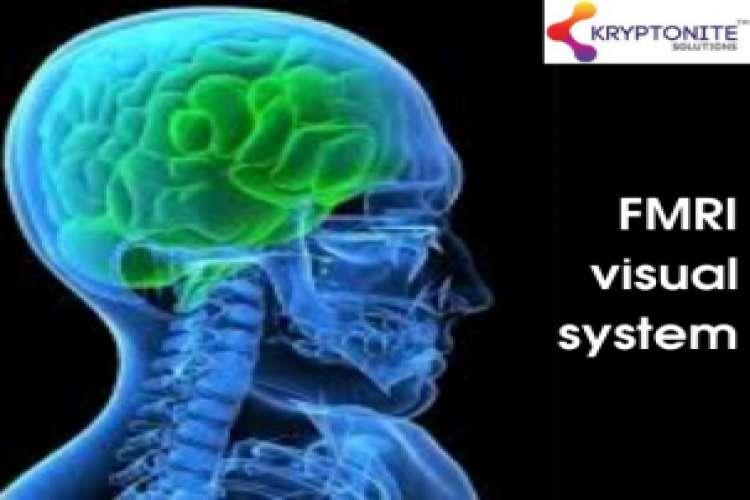 Fmri visual system   kryptonite solutions