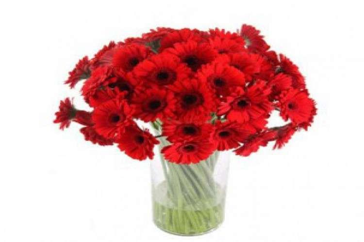 Hubli dharwad online flowers delvery in hubli dharwad