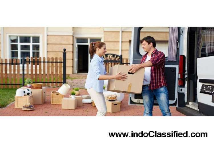 international-courier-and-cargo-service-in-hyderabad_163162118610.jpg