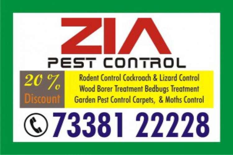 Pest control cockroach service three months warranty