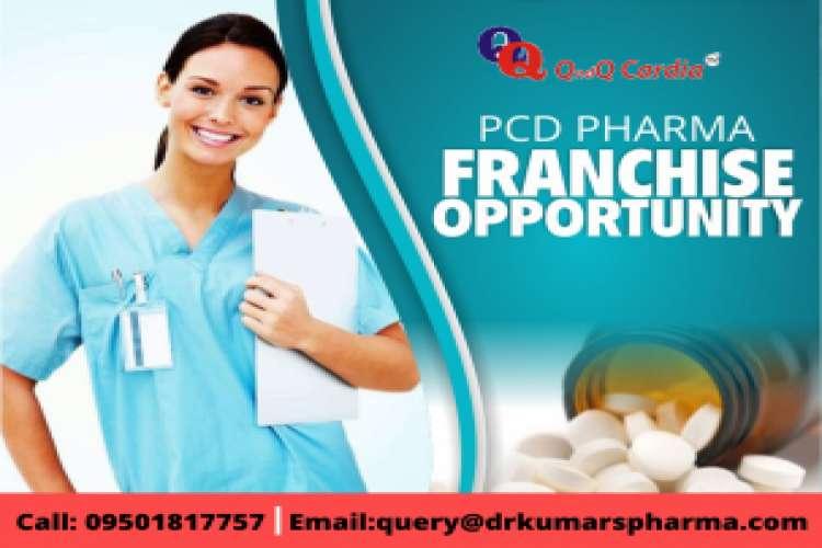Qndq pharma   best pharma pcd company
