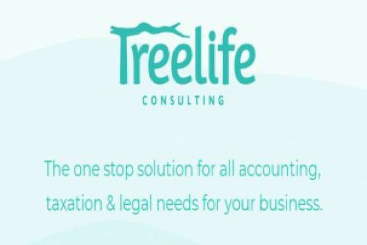 Startup chartered accountant and lawyer for startup