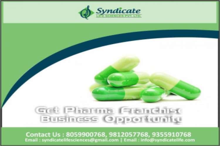 Syndicate lifesciences pcd pharma franchise company