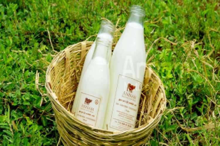 The best farmhouse milk for your house